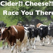 Strolling of the Heifers Beer, Cider and Cheese Festival