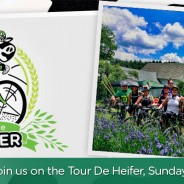 Tour de Heifer: Sunday, June 7