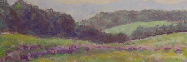 Brattleboro Memorial Hospital features Stroll exhibit by Southern Vermont Pastel Artists