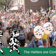 Watch video of the June 4, 2016 Strolling of the Heifers Parade
