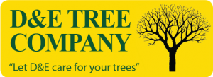 D&E Tree Company in Guilford, Vermont, specializes in difficult tree removal services. Residential and commercial customers within the tri-state area can count on us for very competitive prices on our professional services, including: