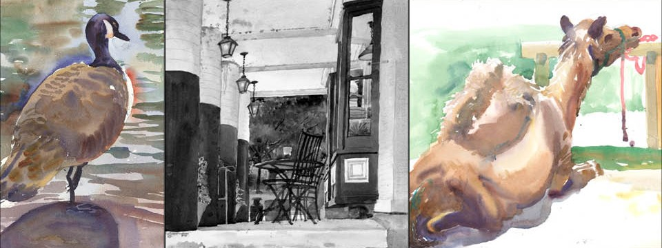 September Gallery at the Garden — Frank M. Costantino Watercolors & Illustrations