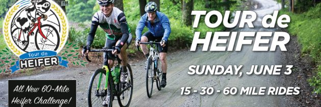 Join us on the Tour de Heifer!