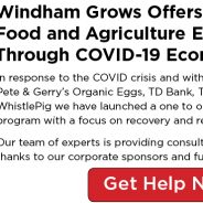 Free Consulting for Farm & Food Businesses