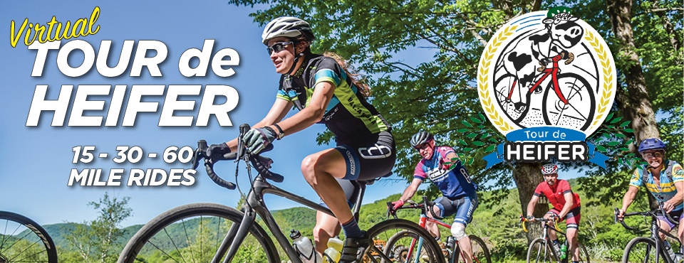 Join us for the Virtual Tour de Heifer!